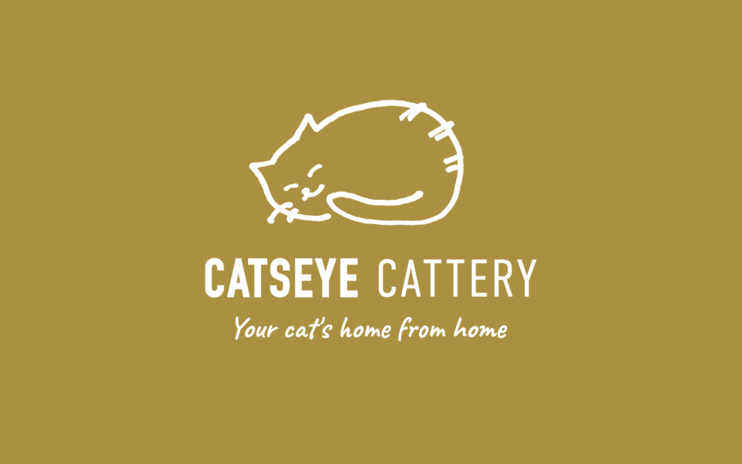 Catseye Cattery checks in with new brand and site